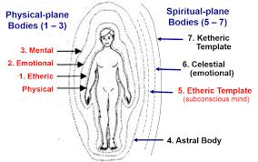 Mind-Body Phenomena & Subtle-Energy Bodies | Douglas Kinney: A Grand Theory  of Everything